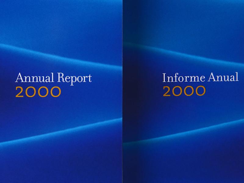 Iberdrola Annual Report